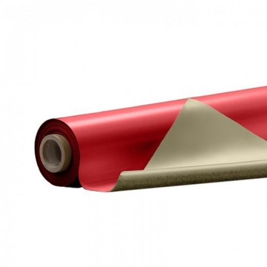 ConsorLbm-31